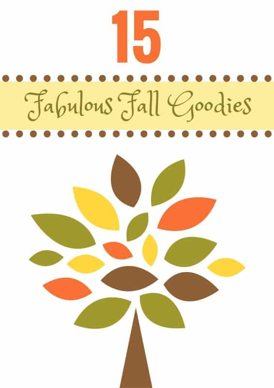 15 Fabulous Fall Goodies