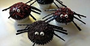 spider cupcakes set no graphics-header