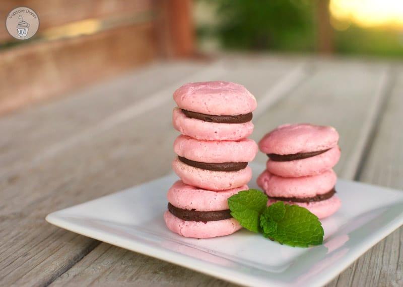 French Macarons Macaroons Cupcake Diaries