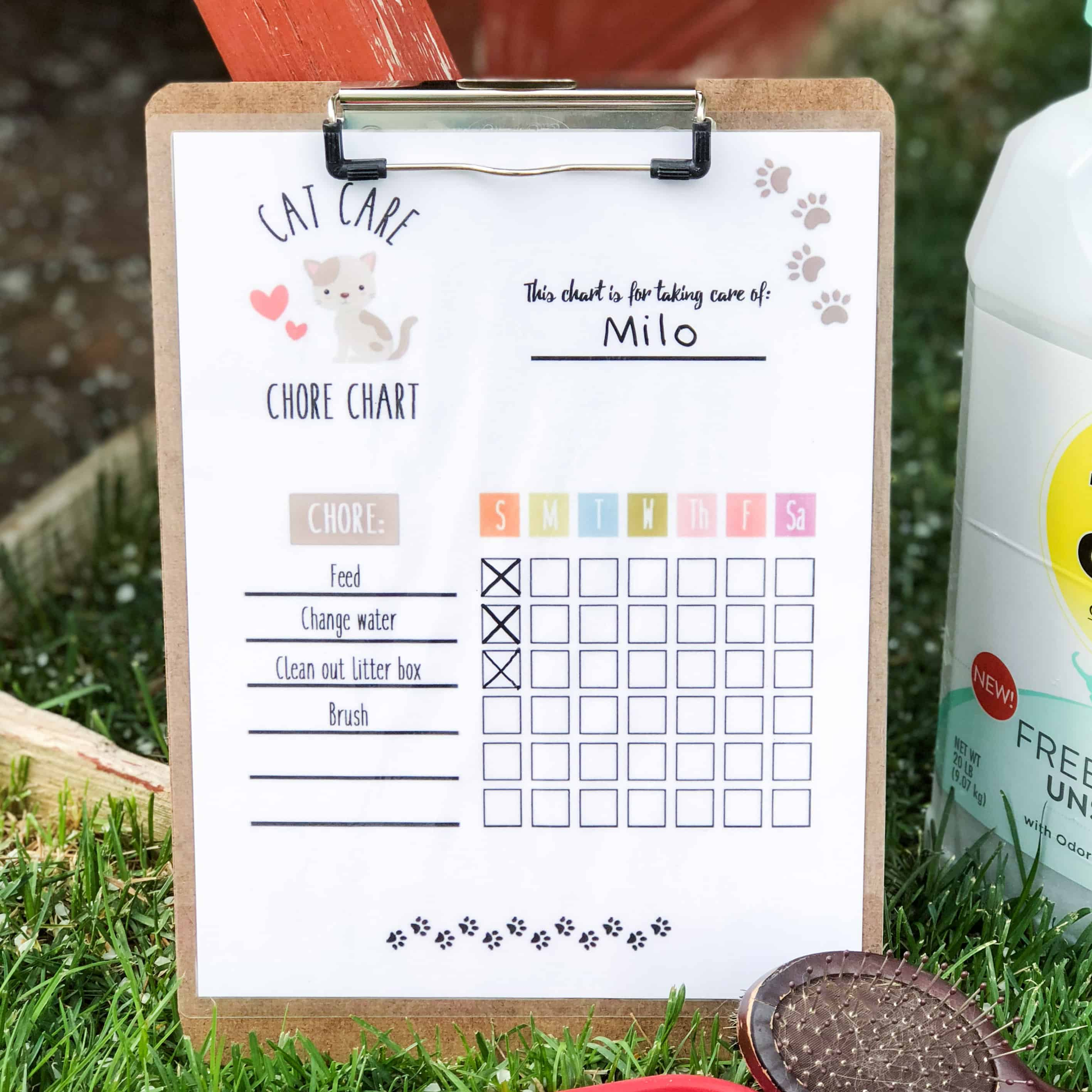 Help the kids have fun taking care of their favorite feline with this printable Cat Care Chore Chart!
