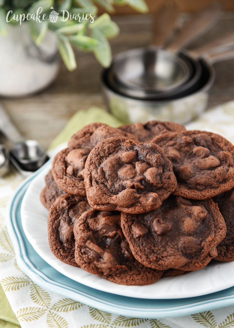 Chewy Chocolate Chocolate Chip Cookies - So wonderfully fudgy and delectable!